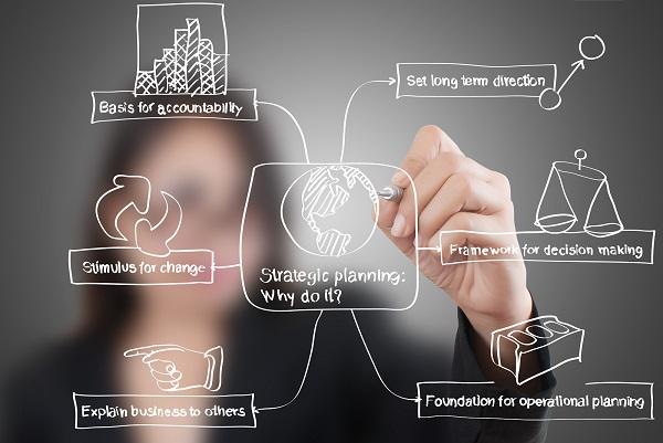 Strategic Planning Expert